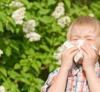 Il grande universo delle allergie